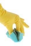 Резиновая перчатка и зеленая губка Стоковые Изображения RF