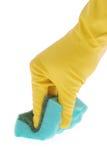Резиновая перчатка и зеленая губка Стоковая Фотография