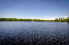 Резиновое Ducky в озере Стоковое Изображение
