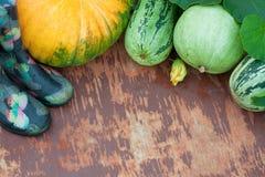 Резиновые ботинки, тыквы и Vegetable сердцевины Стоковые Изображения
