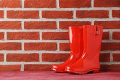 Резиновые ботинки Стоковая Фотография RF
