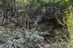 Резное изображение камня Feilai Feng, Lingyin Temple Стоковое Фото