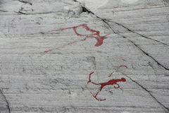 Резное изображение утеса на Alta стоковое фото