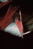 Резюмированные ледяные иголки стоковые фотографии rf