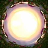 резюмируйте завихрянную предпосылку волшебных цветков сказки на свете захода солнца Стоковое Изображение