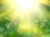 резюмируйте лето предпосылки Стоковое Изображение RF