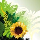 резюмируйте предпосылку флористическую Стоковая Фотография