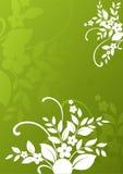 резюмируйте предпосылку флористическую Стоковое Фото