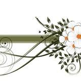 резюмируйте предпосылку флористическую бесплатная иллюстрация