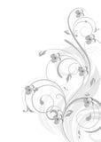 резюмируйте предпосылку флористическую Стоковое фото RF