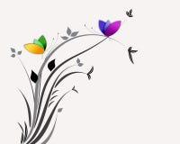 резюмируйте цветки бабочек Стоковые Фото