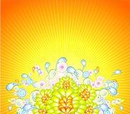 резюмируйте цветки предпосылки Стоковое Изображение