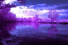 Река Австралия Wallamba стоковые изображения rf