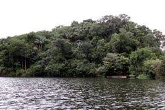 Река Амазонкы дождевого леса Стоковое Изображение RF