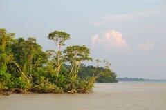 река Амазонкы Стоковое фото RF