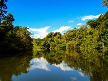 река Амазонкы Стоковая Фотография