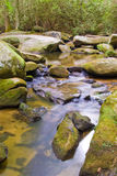 река аппалачских гор Стоковая Фотография