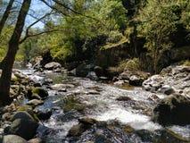 Река арен в горах Испании, между путем рыболовов стоковая фотография rf