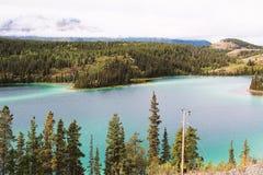 Река Аляски Стоковые Фотографии RF