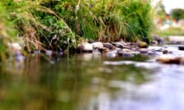 река банка Стоковое фото RF