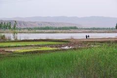 река банка Стоковые Фото