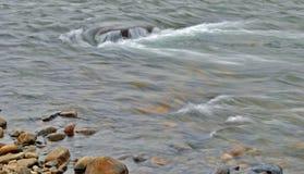 Река бежать через Альберту, Канаду Стоковые Изображения RF