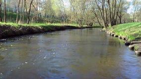 Река весны, над рекой видеоматериал
