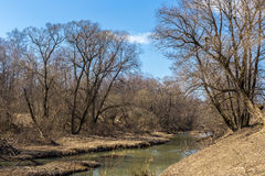 Река весны стоковое фото