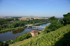 Река & виноградник Viltava Стоковое Изображение