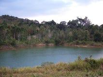 Река внутри национальный парк Khao Yai Стоковое фото RF