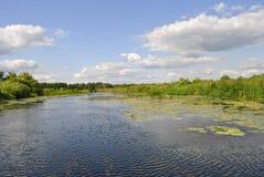 Река Воронежа, Россия Стоковое фото RF