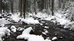 Река водопада пообещанное в зиме сток-видео