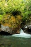 Река воды Стоковые Фото