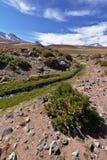 Река высоты Стоковые Фото