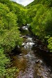 Река в английской сельской местности Стоковые Фотографии RF