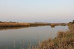 Река в Африке Стоковая Фотография