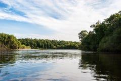 Река в Дальнем востоке стоковое фото rf