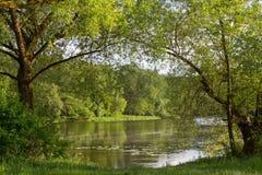 Река в лете Стоковое Изображение