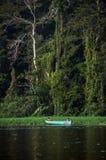 Река в джунглях, Tortuguero, Коста-Рика Стоковые Фотографии RF