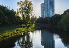 Река в зеленом парке стоковая фотография rf