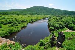 Река в злаковике стоковые фотографии rf