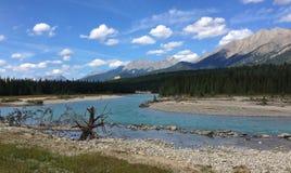 Река в канадских скалистых горах - национальный парк Kootenay стоковые фото