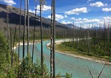 Река в канадских скалистых горах - национальный парк Kootenay стоковое изображение rf