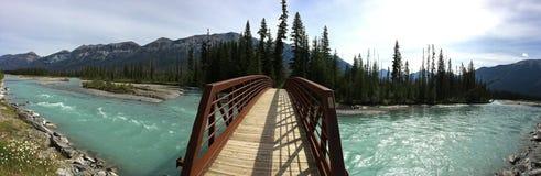 Река в канадских скалистых горах - национальный парк Kootenay стоковая фотография rf