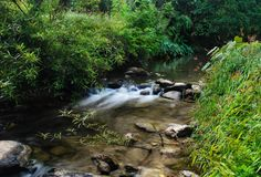 Река в ландшафте национального парка Na Lai Sri Sat Cha, Sukhothai, Таиланд Стоковая Фотография