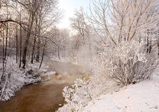 Река в морозном дне стоковая фотография