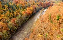 Река в осени, Черногория Moraca Стоковое Изображение