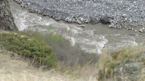Река в долине горы на ноге Mt Kazbegi Georgia, Европа русский ossetia гор федерирования caucasus alania северный Прикарпатский, У видеоматериал