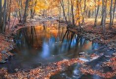 Река в падении с отражениями Стоковые Изображения RF