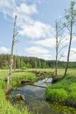 Река в поле Стоковые Фотографии RF